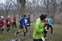 And They're Off... 50-Km Runners Depart Palos Park Woods-North : Laurel Childress